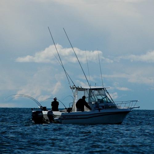 Vancouver Fishing Charter