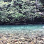 Squamish Fishing Info
